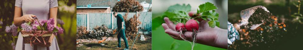 free gardening stuff